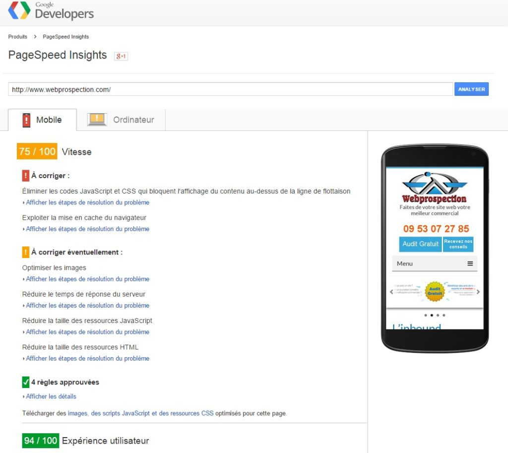 siteweb-rapide-PageSpeed-insights-2