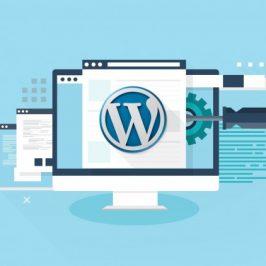 Infographie : Tout ce qu'il faut savoir sur WordPress